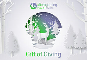 Microgaming Keeps Donating With Gift of Giving Programme