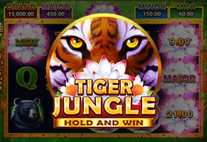 Booongo-Releases-Hold-and-Win-Tiger-Jungle